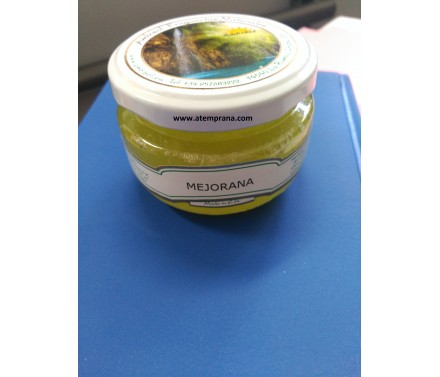 Ambientador de MEjorana
