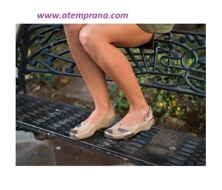 Zapato señora Hollywood